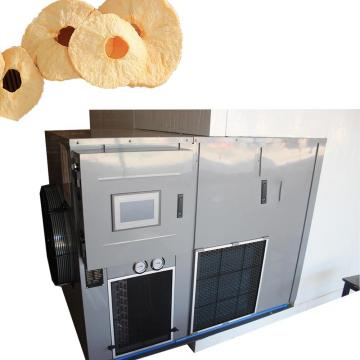 New Design Vacuum Dryer for Fruit